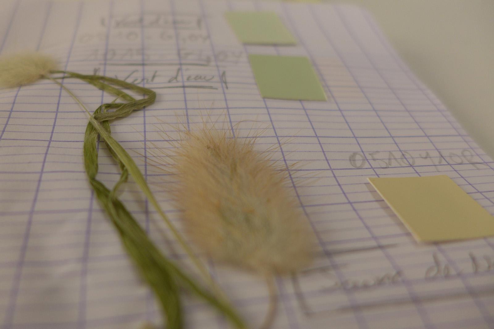 Couleur et Paysage - Herbier Nacarat Color Design